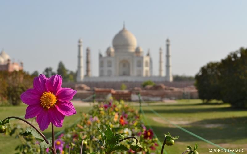 Agra - Índia (16)