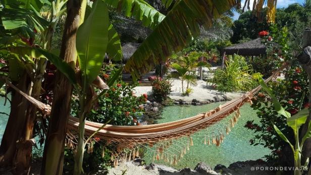 Tao Paradise (3)